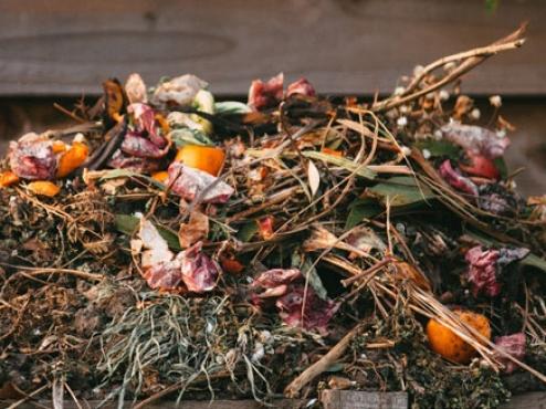Ilustrativna fotografija komposta