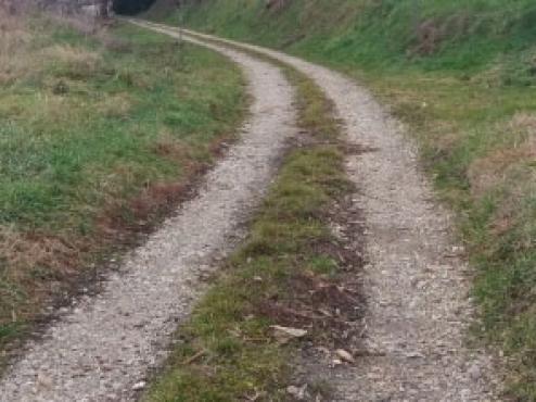 Ilustrativna fotografija poljskog puta